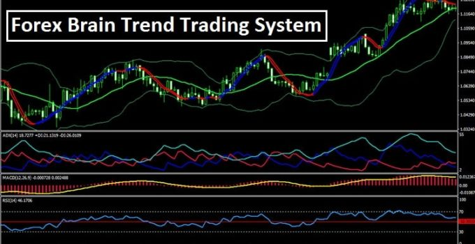 Brain trend trading system
