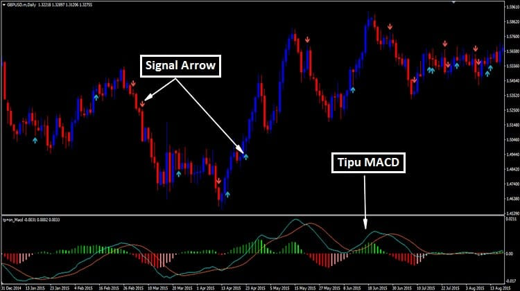 Trading forex with macd indicator