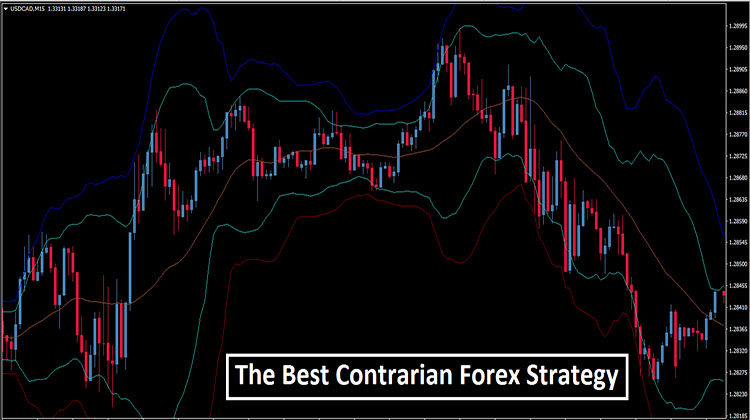 Contrarian trading forex